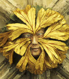 Q&A with Carolyne Larrington | The I.B.Tauris Blogtheibtaurisblog.com3504 × 4010Search by imageGreen man, Medieval, Myths, The Land of the Green Man, Carolyne Larrington